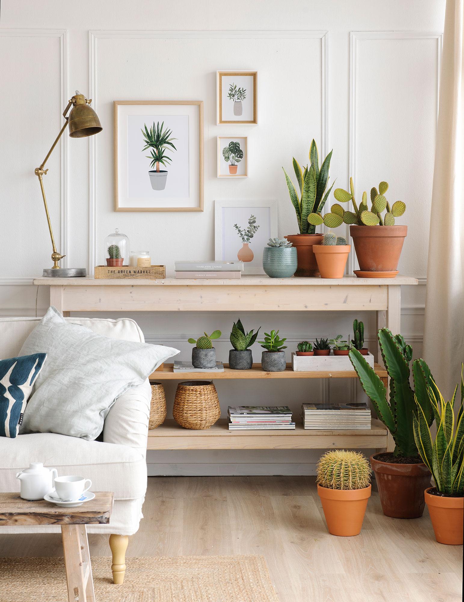 rincon-de-salon-con-mueble-en-estantes-plantas-y-composicion-de-cuadros-con-motivos-vegetales_735980f3